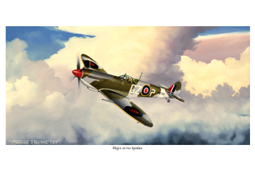 Flight of the Spitfire by Marc Stewart